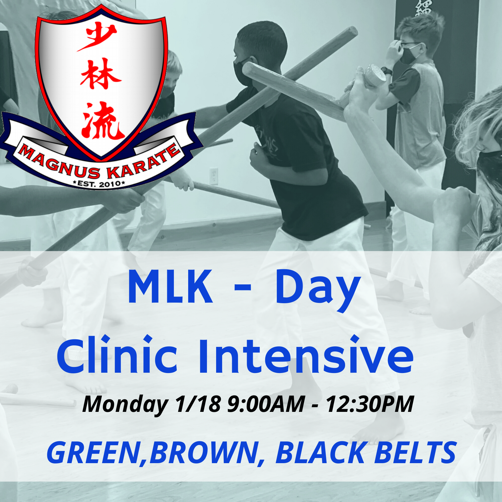MLK DAY Clinic
