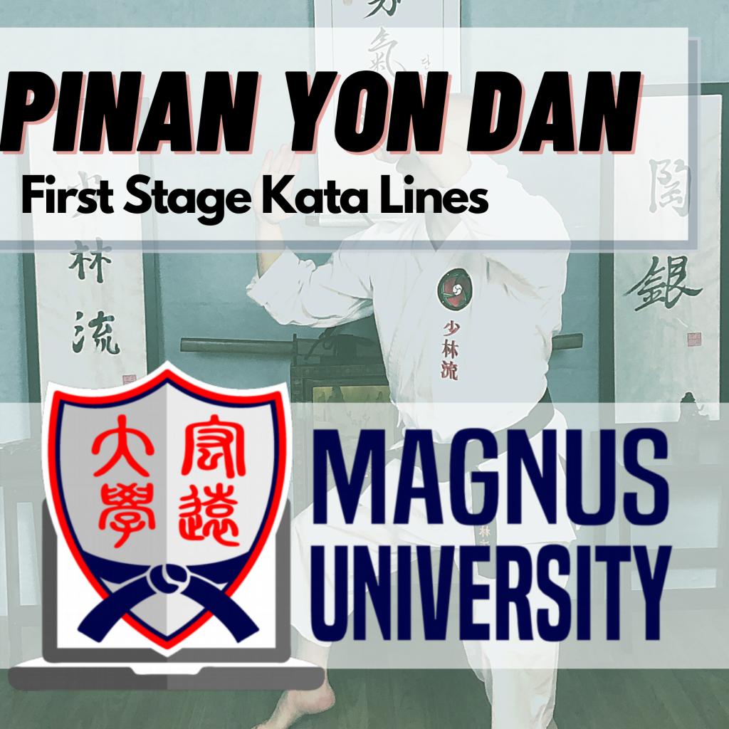 Pinan Yon Dan Kata Lines Cover