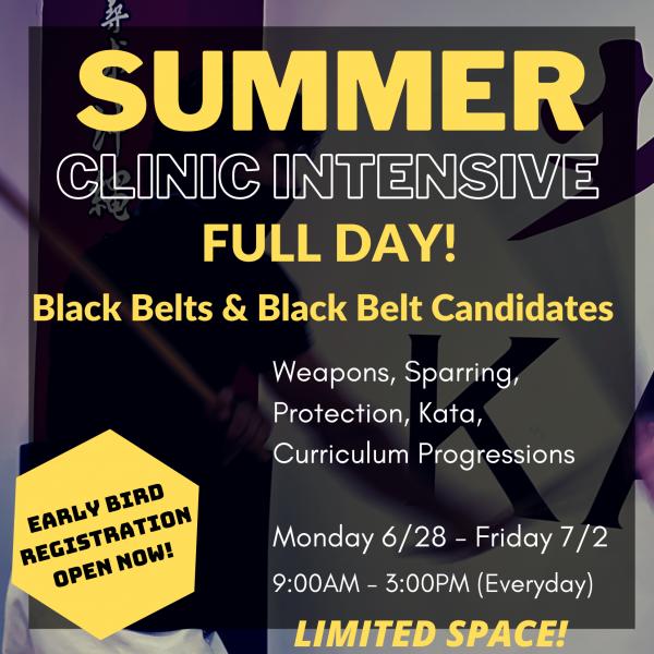 Summer Black Belt Intensive 1