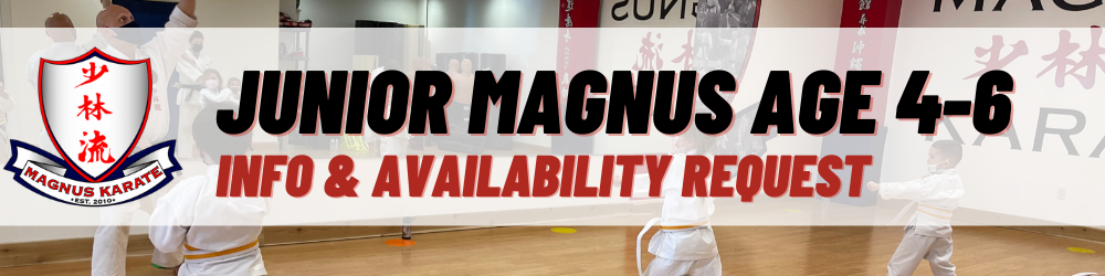 Landing Page Junior Magnus Info Banner
