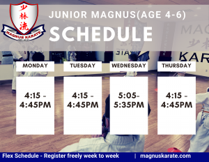 Landing Page Junior Magnus Schedule