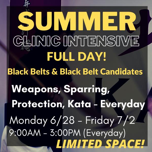 Summer Black Belt Full Day Final Image