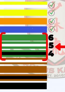Green Belt Belt Chart