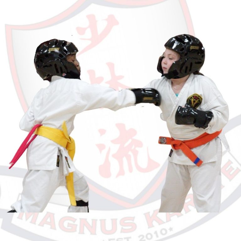 Sparring Gear Info Page Image