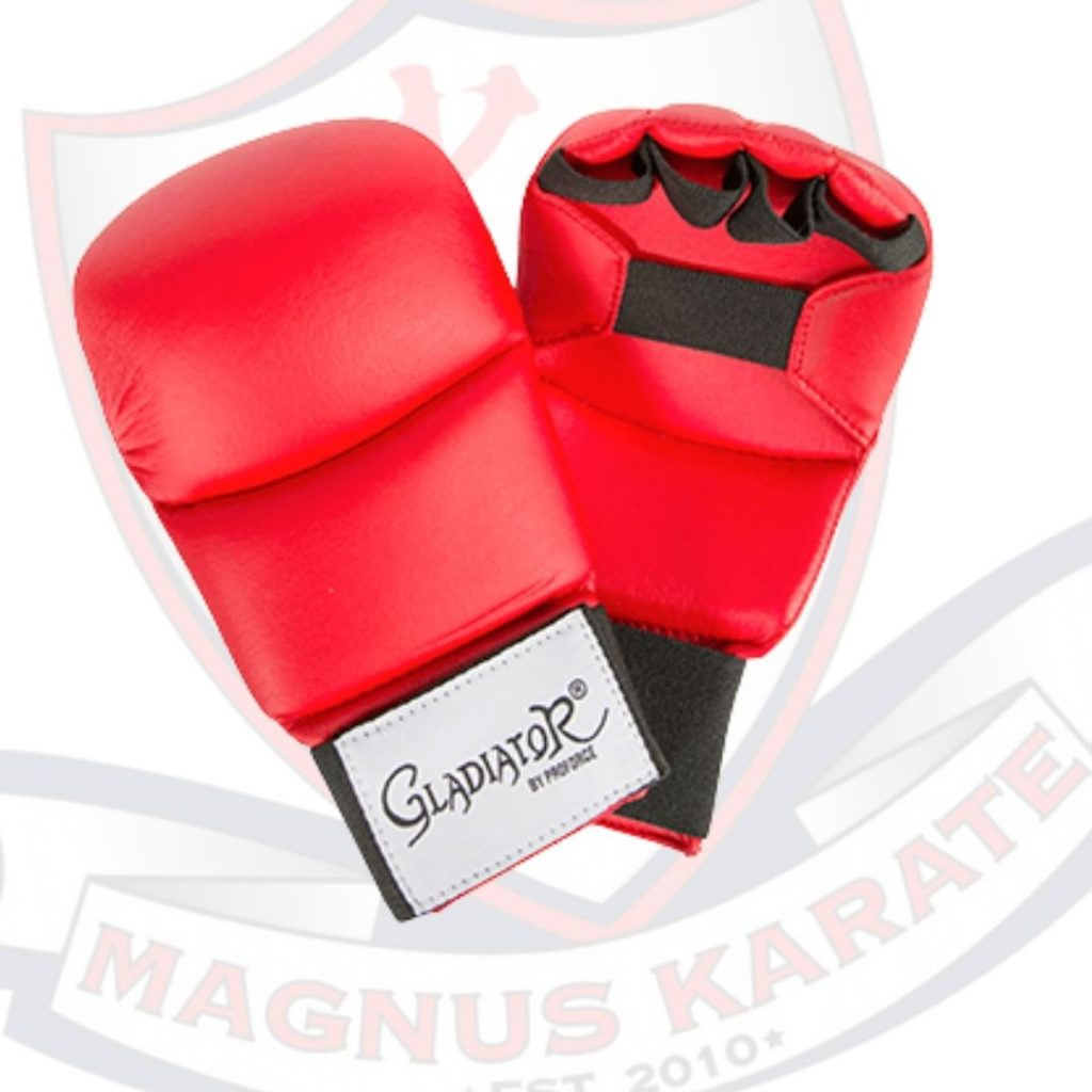 Sparring Gear Red Hand Gear