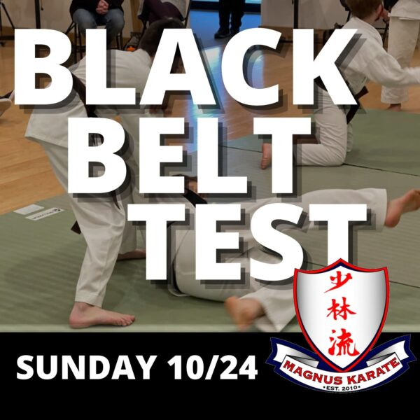 Black Belt Test Info Page Heaader